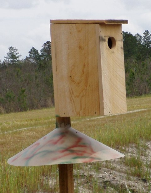 Plans For A Wood Duck Nesting Box